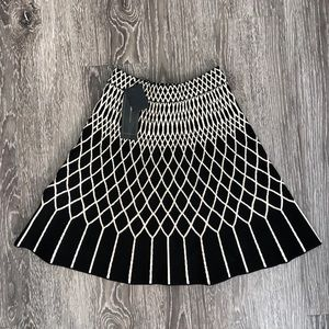 BCBG A-line Skirt